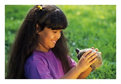 Extensive research should be done on an exotic pet before they are adopted