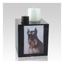 Cremation can offer a world of memorialization options for a pet parent