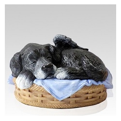 Pet cremation urns offer a world of options to memorialize a treasured friend