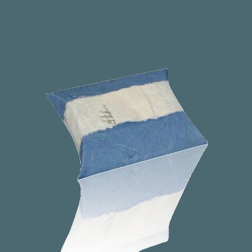 Aqua Journey Small Biodegradable Urn