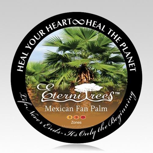Mexican Fan Palm Cremation Ash Pet Tree