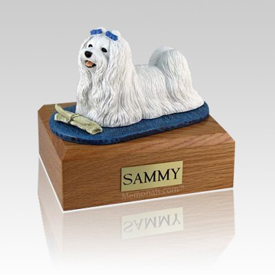 Maltese with Newspaper Large Dog Urn