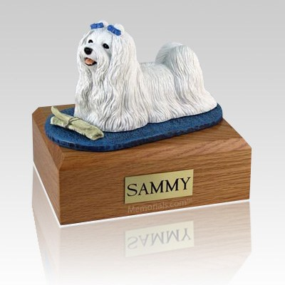Maltese with Newspaper X Large Dog Urn