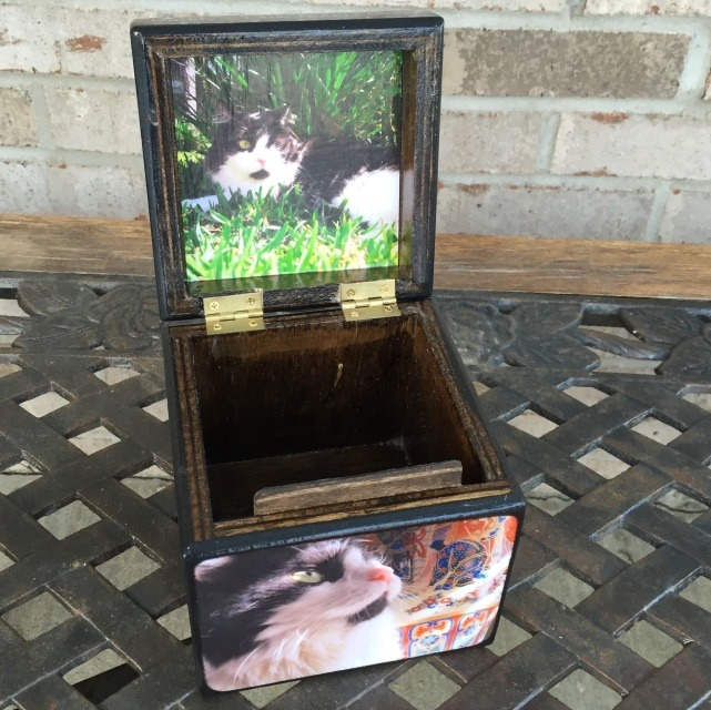 Photo Cube Medium Pet Urn With Lid Photo