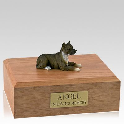 Pit Bull Terrier Brindle Laying Dog Urns