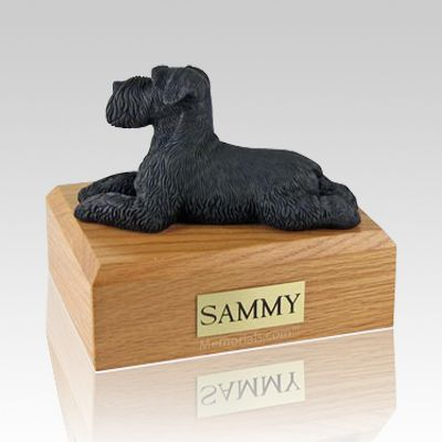 Schnauzer Black Ears Down Laying Dog Urns