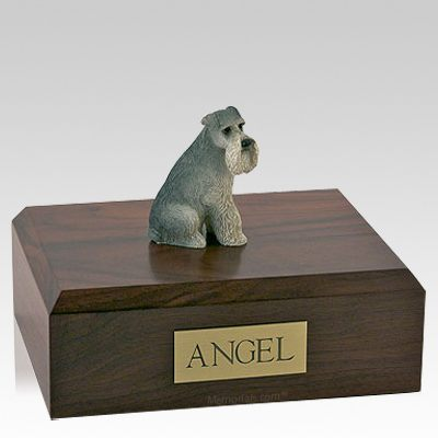 Schnauzer Gray Ears Down Sitting Dog Urns