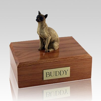 Siamese Tan Large Cat Cremation Urn