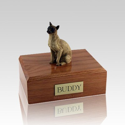 Siamese Tan Small Cat Cremation Urn