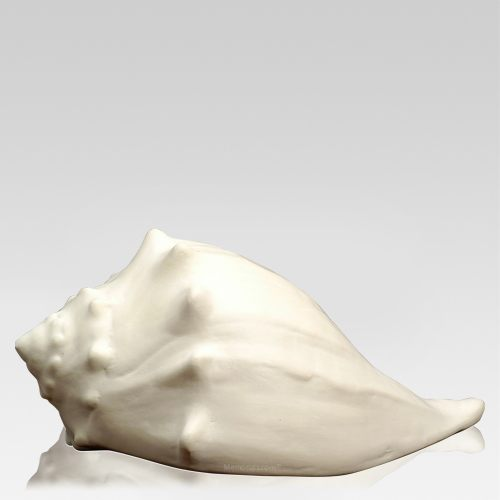 Whelk Shell Cremation Urn