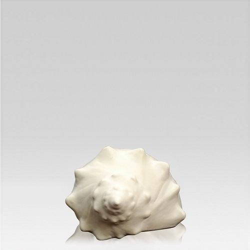 Whelk Shell Keepsake Urn