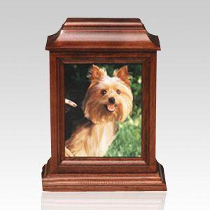 Hamburg Pet Picture Cremation Urn