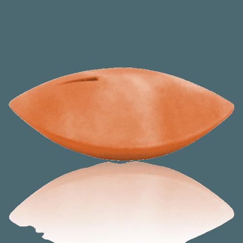 Memento Coral Biodegradable Urn