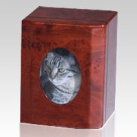 Memento Photo Pet Cremation Urn II