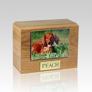 Oak Photo Pet Cremation Urns