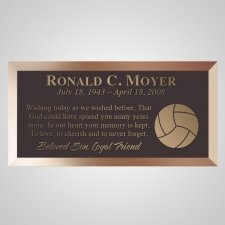 Volleyball Bronze Plaque