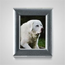 Small Rectangle Silver Pet Picture Frame