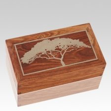 Acacia Wood Cremation Urns