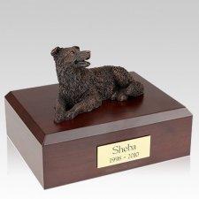 Border Collie Bronze X Large Dog Urn