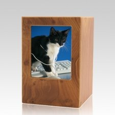 Natural Pet Medium Photo Wood Urn