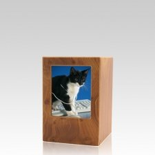 Natural Pet Keepsake Photo Wood Urn