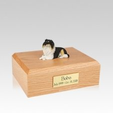 Collie Tri-Color Resting Medium Dog Urn