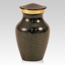 Earth Keepsake Cremation Urns