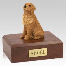 Golden Retriever Golden Seated Dog Urns