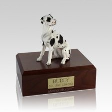 Great Dane Harlequin Ears Down Medium Dog Urn