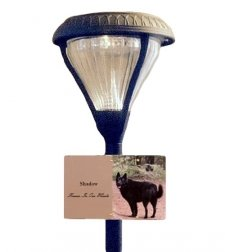 Guiding Light Pet Photo Grave Lamp