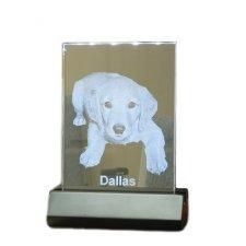 Illuminated Glass Medium Pet Photo