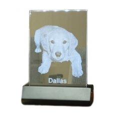 Illuminated Glass Pet Photo
