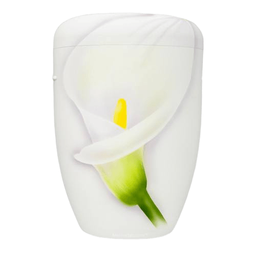 Innocence Biodegradable Urn