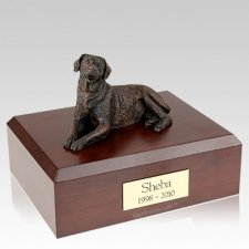 Labrador Bronze X Large Dog Urn
