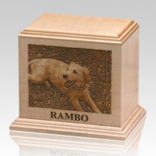 Laser Etched Large Cherry Pet Urn