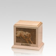 Laser Etched Small Maple Pet Urn