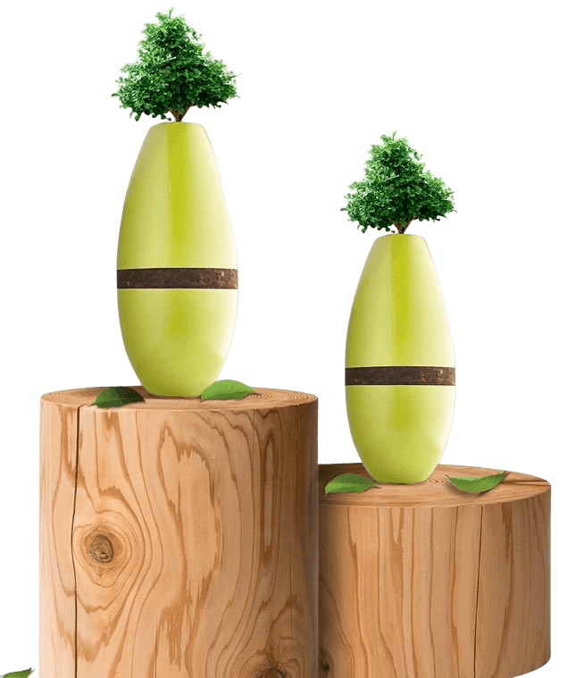 Living Tree Cremation Urn