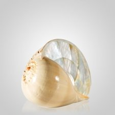Melo Pearl Shell Pet Cremation Urn