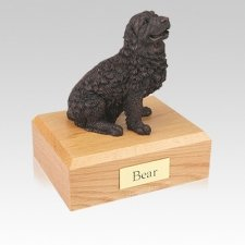 Newfoundland Bronze Medium Dog Urn