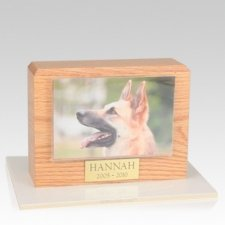 Oak Picture Small Pet Cremation Urn