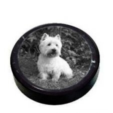 Pet Photo Marble Paper Weight
