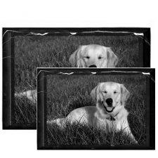 Pet Marble Photo Plaques