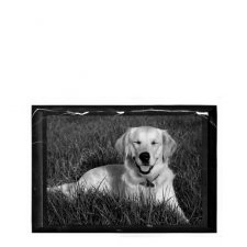 Pet Marble Mini Photo Plaque