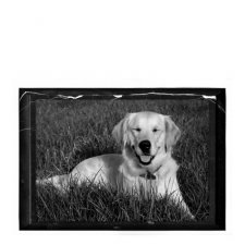 Pet Marble Small Photo Plaque