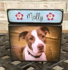 Photo Cube Large Pet Urn
