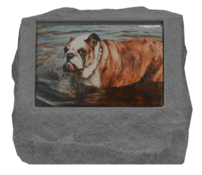 Photo Cremation Pet Urn