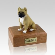 Pit Bull Tan & White Large Dog Urn