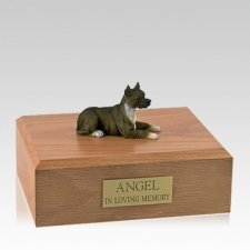 Pit Bull Terrier Brindle Laying Large Dog Urn