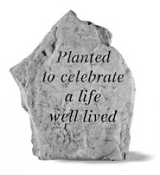 Planted To Celebrate Rock