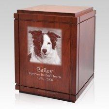 Prima Pet Cremation Urn